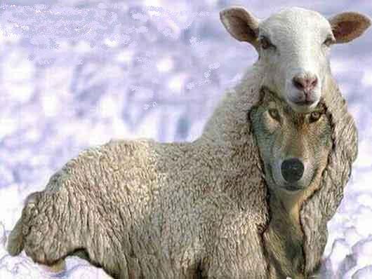 Los falsos profetas Falsosprofetas